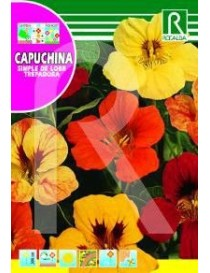 CAPUCHINA SIMPLE DE LOBB TREPA