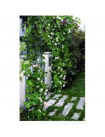 Hierro forjado jard n 8 tienda del jardin for Arco decorativo jardin