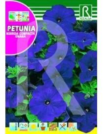 PETUNIA HIBRIDA COMPACTA ENANA AZUL