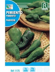 PIMIENTO PADRON