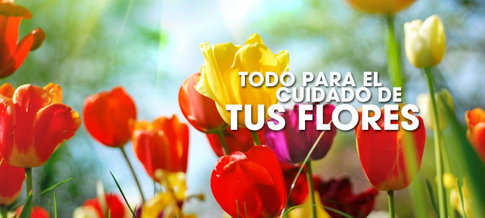 todo-cuidado-flores